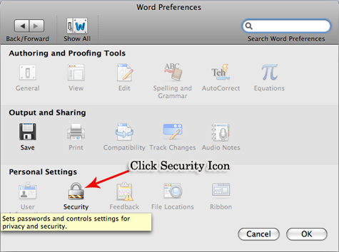 Microsoft Word doc 2011 Security Options